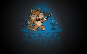 Picture cat, scene, focus, mouse