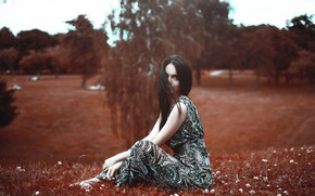 Picture girl, trees, glade, dress, brunette, hairstyle, sitting, on the grass, nature, bokeh, Khusen Rustamov