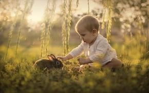 Wallpaper hare, child, nature