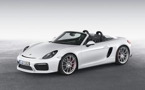 Picture Porsche, convertible, Porsche, Boxster, Spyder, 2015, 981, bokster