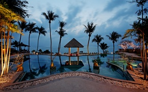 Picture palm trees, the ocean, Villa, pool, Thailand, pool, beachfront