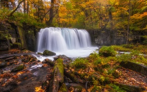 Picture autumn, forest, river, waterfall