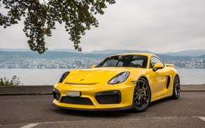 Picture Porsche, Cayman, Yellow, GT4