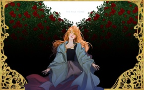 Picture roses, frame, blush, red, the bushes, art, Choo Haeyun, the Pale Horse