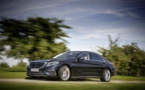 Picture road, trees, background, movement, Mercedes-Benz, blur, driver, car, sedan, AMG, 2014, S65
