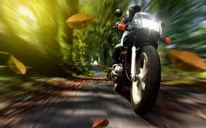 Picture autumn, leaves, nature, speed, motorcycle, helmet, motorcyclist