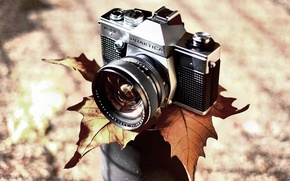 Picture sheet, background, camera, Praktica II