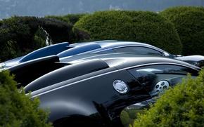 Picture auto, Bugatti, the bushes
