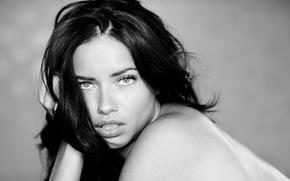 Picture photo, Wallpaper, model, Lima, Andriana