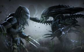 Picture predator, stranger, alien, predator