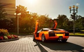 Picture flowers, orange, Lamborghini, pavers, Blik, Lamborghini, Murcielago, open doors, orange, Lamborghini, murciélago, Lambo doors, lamppost