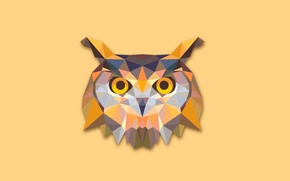 Picture abstraction, owl, bird, minimalism, owl
