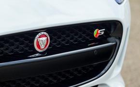 Picture design, coupe, logo, Jaguar, sports car, bumper, Jaguar F-Type Coupe 2014, V6-S