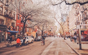 Picture trees, bike, people, street, New York, neon, stores, life, United States, restaurants, bus stop