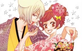 Picture smile, hairstyle, kimono, two, stars, art, flirting, flower in hair, the demon-Fox, Bento, tomoe, nanami …