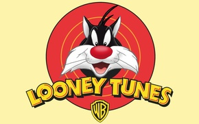 Picture Cat, Cartoon, Looney Tunes, Sylvester, Sylvester