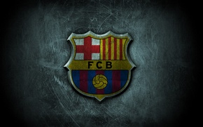 Picture football, Spain, Barcelona, leopard