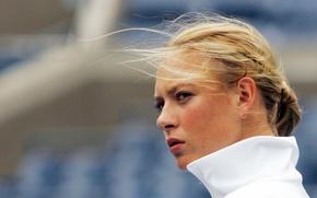 Picture white, Maria Sharapova, model, tennis, sports, Masha