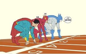 Picture Batman, race, Superman, Flash, The Flash, DC comics