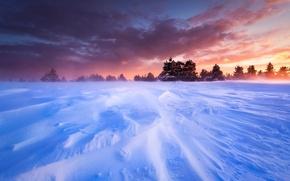 Picture winter, the sky, snow, trees, landscape, sunset, France, plain, Blizzard, plateau, Provence