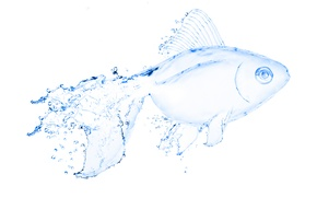 Picture water, fish, art