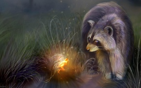 Picture night, stream, fantasy, fairy, raccoon, GERMANY, Bente Schlick