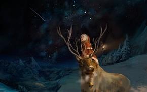 Picture winter, night, emotions, boy, deer, art, costume, lantern, starry sky
