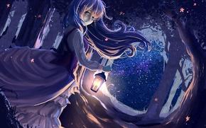 Picture forest, girl, night, the wind, dress, art, lantern, ryouya