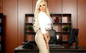Picture look, model, interior, blonde, office, Nina Elle