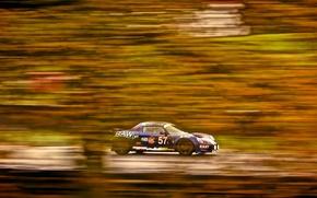 Picture Lotus, Motorsport, Indy