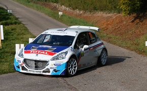 Picture Grass, Turn, Asphalt, Peugeot, Peugeot, Rally, Rally, 208, T16