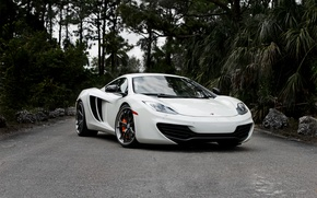 Picture road, white, the sky, trees, McLaren, white, MP4-12C, the front, McLaren