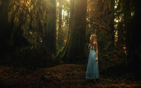 Picture forest, girl, TJ Drysdale, Quiet Wander