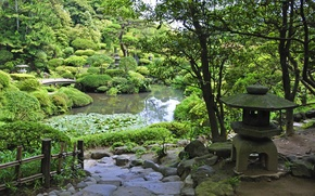 Picture greens, grass, trees, pond, stones, garden, track, the bridge, the bushes