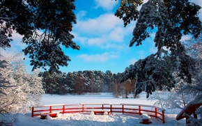 Picture winter, the sky, the sun, snow, trees, branches, Park, benches