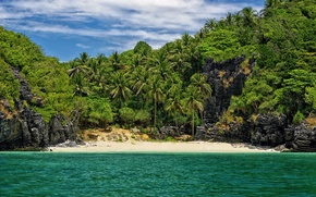 Picture beach, palm trees, in a secluded place