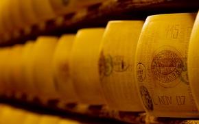Wallpaper cellar, barrels, alcoholic beverages