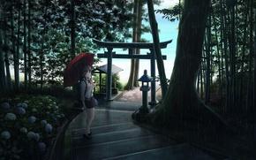 Picture girl, trees, flowers, nature, rain, umbrella, anime, art, the camera, ladder, schoolgirl, ume32ki