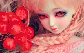 Picture eyes, berries, toy, doll, braids