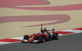 Picture Ferrari, Fernando Alonso, Alonso, F14T
