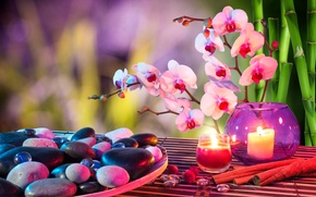 Picture flower, stones, candle, bamboo, cinnamon, Orchid, Spa