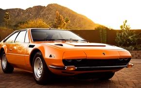 Picture Auto, Mountains, Lamborghini, Palm trees, Cactus, Jarama