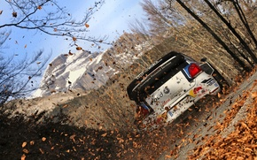 Picture Leaves, Volkswagen, WRC, Rally, Rally, Polo, Back