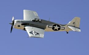 Picture retro, fm-2, grumman, the plane, the sky, wildcat
