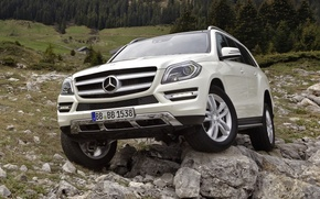 Picture forest, white, stones, Mercedes-Benz, jeep, SUV, 500, the front, BlueEfficiency, Mercedes Benz