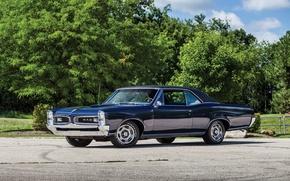 Picture Pontiac, GTO, Tempest