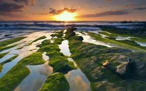 Picture sea, wave, the sky, water, the sun, clouds, light, stones, rocks, moss, excerpt, Spain, Barrika