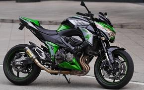 Picture motorcycle, Kawasaki, Monster, Z800