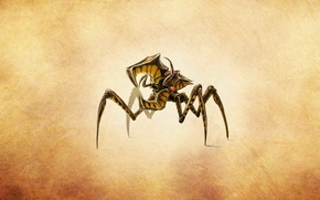 Picture beetle, starship troopers, shifty from the movie, arachnids, starship troopers, arachnid