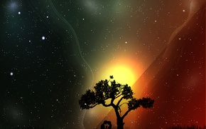 Picture space, trees, love, people, the universe, stars, relationship, silhouettes